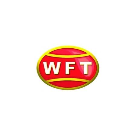 Kalastusnöör WFT KG Strong 0,12 / 15 kg